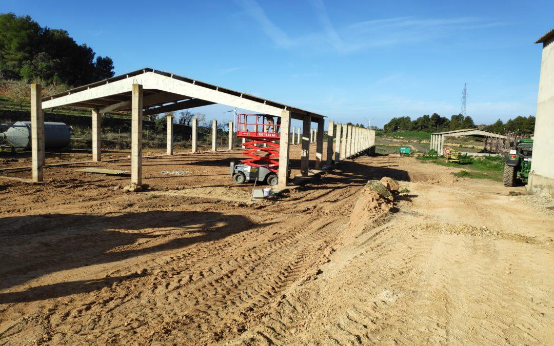 Construcció d'una granja de gallines camperes